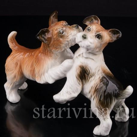 Фарфоровая статуэтка собак Играющие терьеры, Karl Ens, Германия, сер. 20 в.